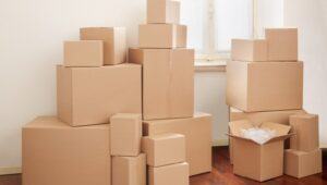 South Cargo Packers and Movers Bibwewadi Pune