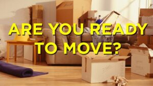 South Cargo Packers and Movers Magarpatta City Pune