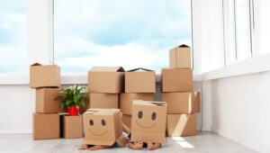 South Cargo Packers and Movers Pimple Gurav Pune