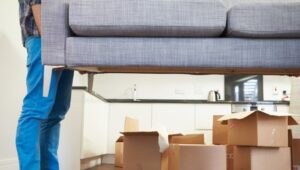 South Cargo Packers and Movers Talegaon Pune